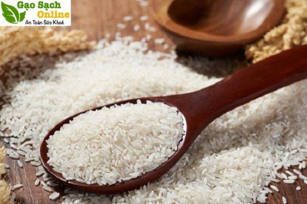 Giá gạo nếp