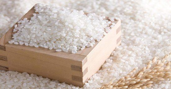 bảng giá gạo mới nhất