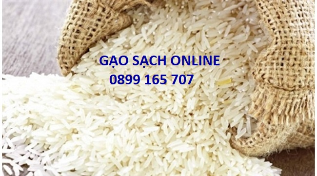 Gạo thái lan nhập khẩu