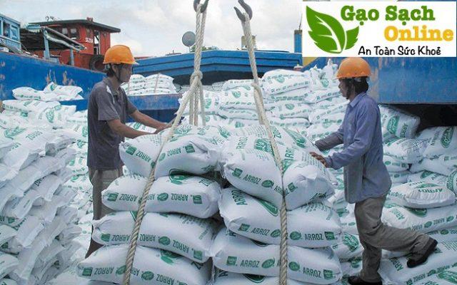Gạo thái lan nhập khẩu mua ở đâu